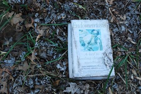 Ground with informative litter.jpg