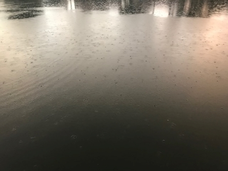 Ground with light rain_3979